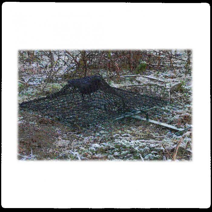 Капан-мрежа за птици